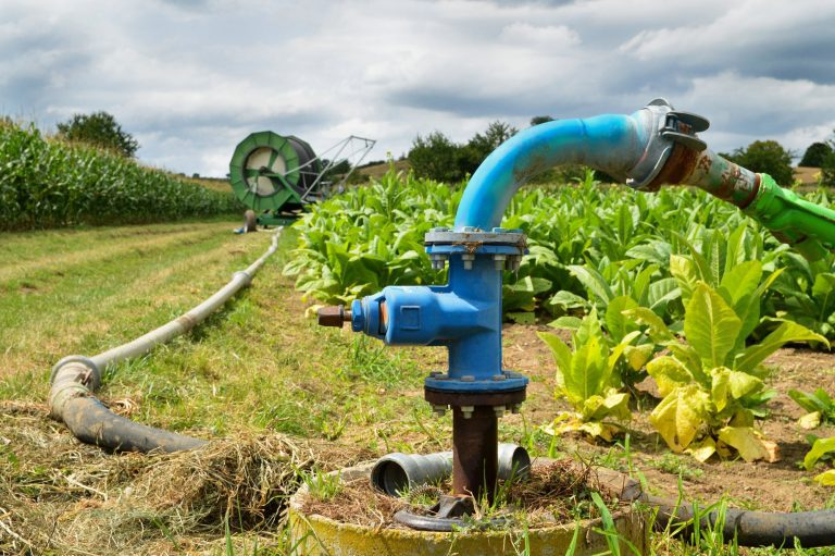 How To Choose The Right Agricultural Pump For Your Needs